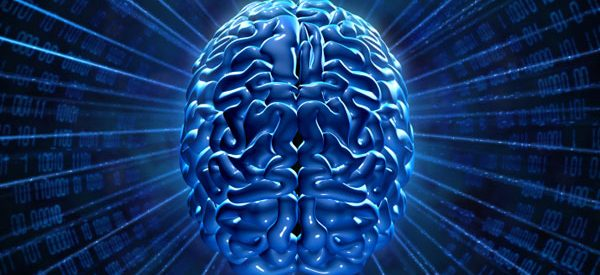 choline reviews