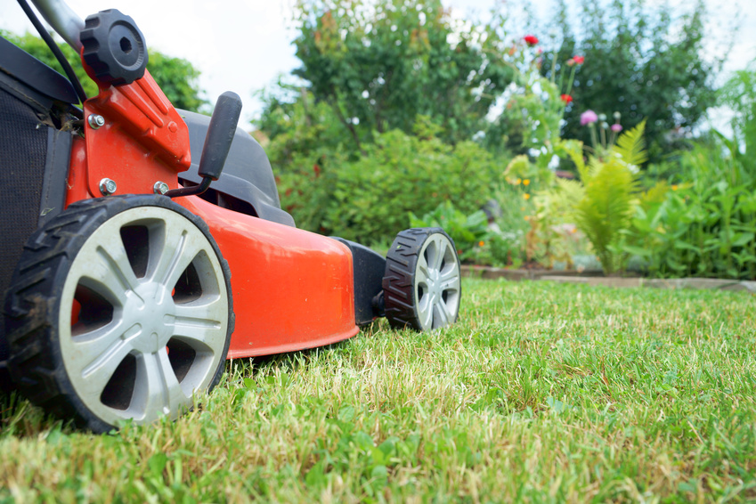 lawn service arlington va
